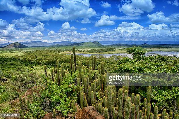 Kenya, Rift Valley Province, view to Lake Naivasha