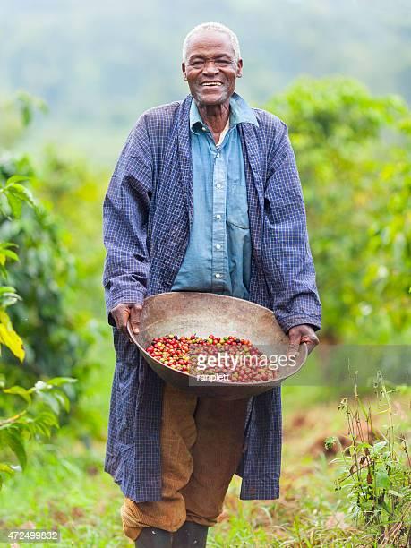 ケニアフェアトレードコーヒーの農家