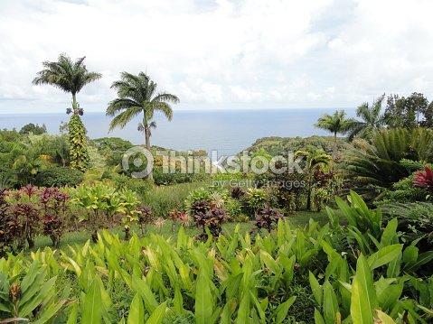 Keopuka Rock Overlook In Tropical Garden Of Eden Maui Hawaii Stock ...