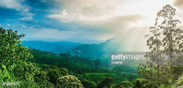 Kerala Mountains
