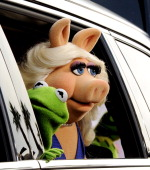 Kermit the Frog and Miss Piggy arrive at the premiere of Disney's 'Muppets Most Wanted' at the El Capitan Theatre on March 11 2014 in Los Angeles...