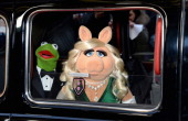 Kermit the Frog and Miss Piggy attend the VIP screening of 'The Muppets Most Wanted' at The Curzon Mayfair on March 24 2014 in London England