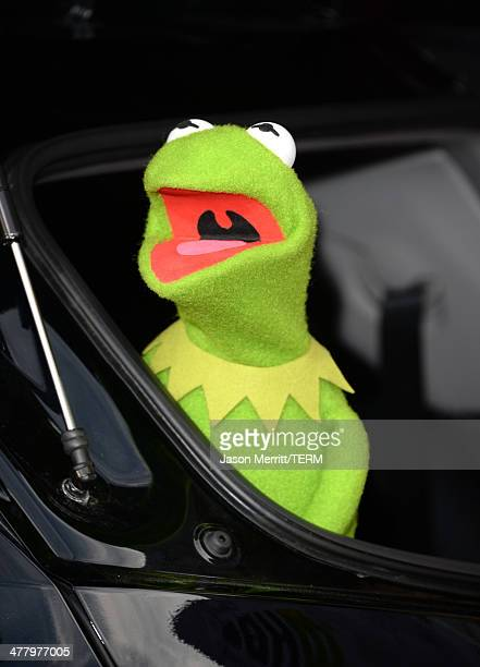 Kermit the Frog attends the premiere of Disney's 'Muppets Most Wanted' at the El Capitan Theatre on March 11 2014 in Hollywood California