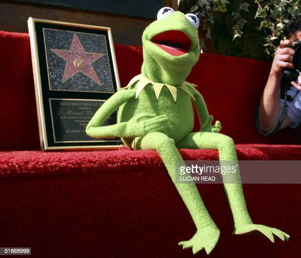 Kermit the Frog greets the public during the unveiling of a star for the amphibian icon on Hollywood's famous Walk of Fame Walk of Fame 14 November...