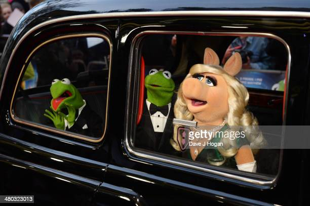 Kermit The Frog Miss Piggy and Constantine arrive at a VIP screening of 'The Muppets Most Wanted' at The Curzon Mayfair on March 24 2014 in London...