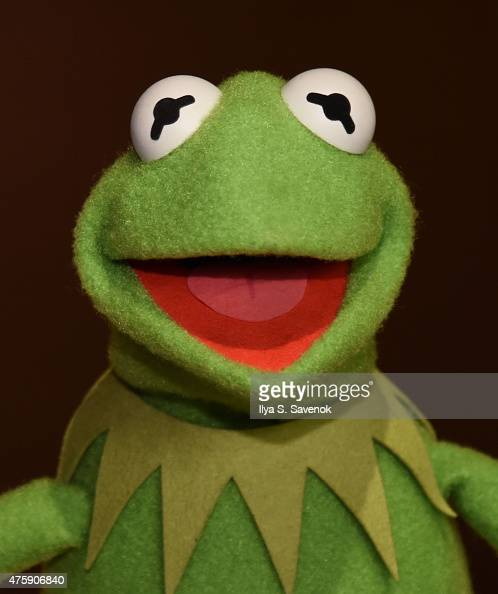 Kermit the Frog poses during Brooklyn Museum's Sackler Center First Awards at Brooklyn Museum on June 4 2015 in New York City