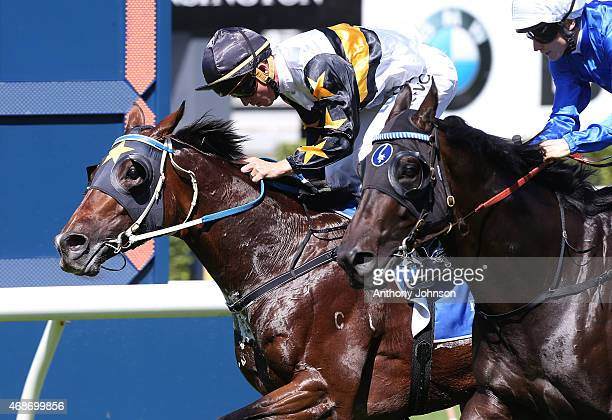 Kerrin McEvoy rides Hi World to win race 2 The Carbine Club Stakes during Sydney Racing at Royal Randwick Racecourse on April 6 2015 in Sydney...