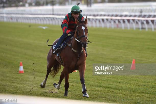 Kerrin McEvoy riding Egg Tart during a trackwork session at Flemington Racecourse on October 31 2017 in Melbourne Australia