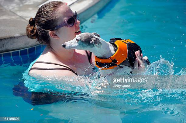 THORNTON CO Kerry Hieb helps her dog 'Lola' goe for a swim at the Thornton City swimming pool for the 4th Annual 'Paws for a Dip' Saturday morning...