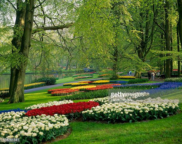Keukenhof, also known as the Garden of Europe, Holland, the Netherlands