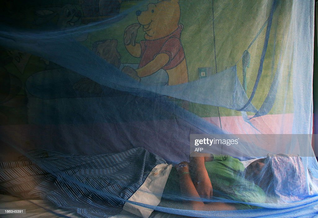 Kevin Flores, 11, remains under a mosquito net as he is being treated for dengue fever, at 'La Mascota' hospital in Managua, on October 30, 2013. The Nicaraguan government issued a health red alert as a dengue fever epidemic has killed 14 people so far this year and infected more than 5,000 individuals. Dengue, transmitted by the Aedes aegypti mosquito, occurs in Central America mostly during its rainy season from May to November. The disease causes fever, muscle and joint ache as well as potentially fatal dengue hemorrhagic fever and dengue shock syndrome. AFP PHOTO / Inti OCON