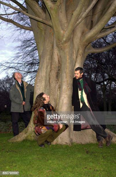 Kevin Hand from the Tree Council Hippy Jonathan Crosse and tree lover Fred Hagenender in London's Hyde Park considering the health benefits of tree...