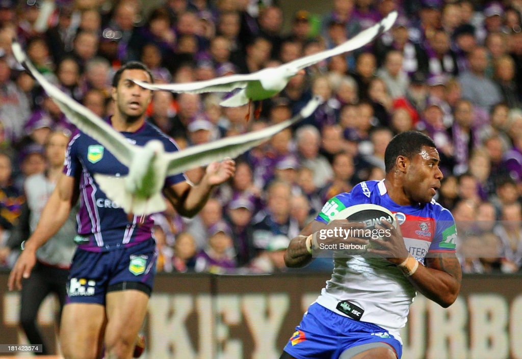 Kevin Naiqama of the Knights runs with the ball as seagulls fly past during the NRL Second Semi Final match between the Melbourne Storm and the...