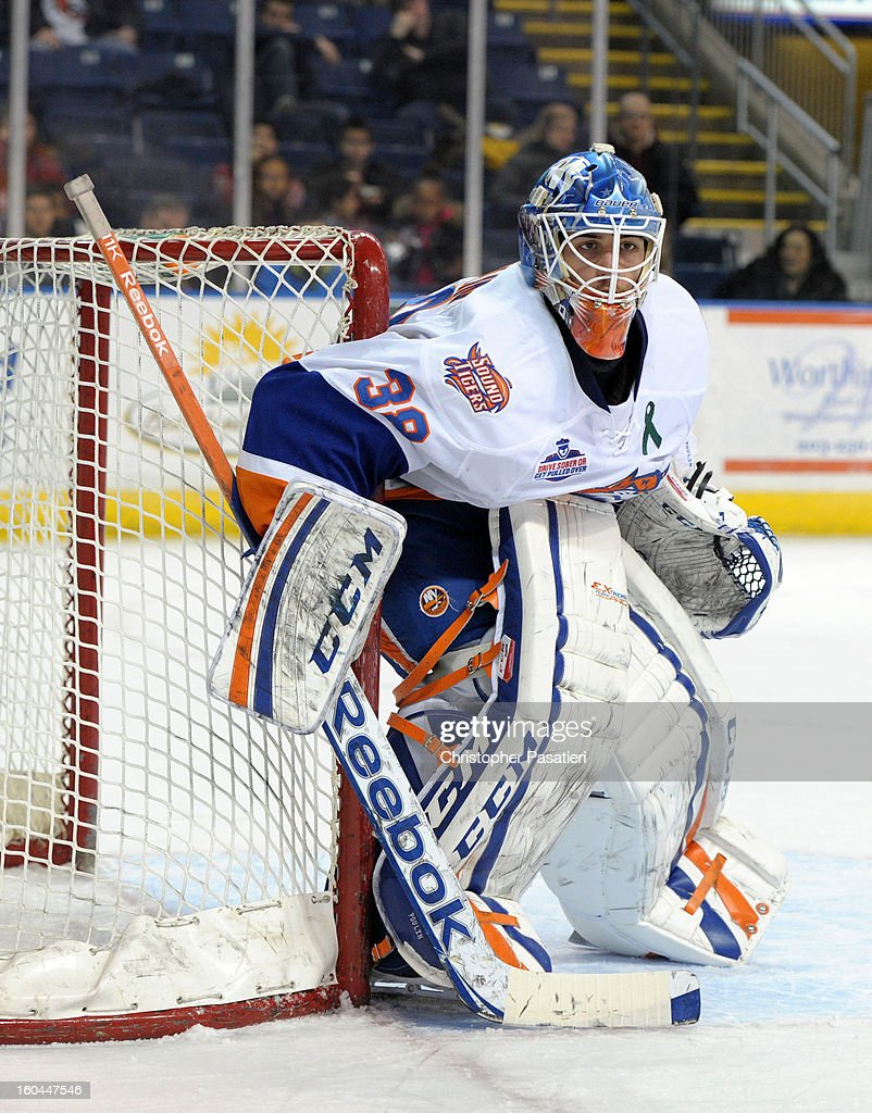 Kevin Poulin #38 of the Bridgeport Sound Tigers tends goal during an American Hockey League game against the Providence Bruins on January 31, 2013 at the Webster Bank Arena at Harbor Yard in Bridgeport, Connecticut.