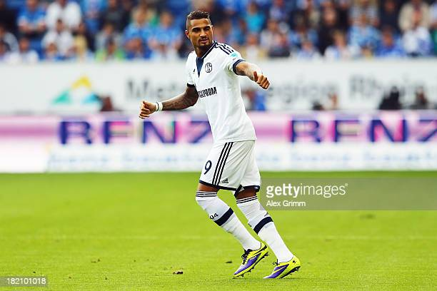 KevinPrince Boateng of Schalke celebrates his team's first goal during the Bundesliga match between 1899 Hoffenheim and FC Schalke 04 on September 28...
