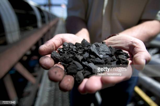 A KFx company executive shows off a handful of the company's KFuel or 'clean coal' an upgraded coal produced with nearby Powder River Basin coal and...