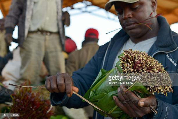 A khat trader packages shoots for transportation at an open air market in Maua in Meru county on September 9 2016 in Kenya's central province Farmer...
