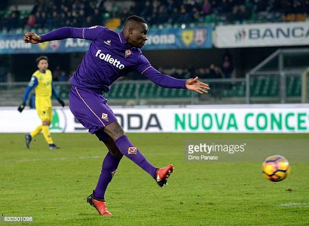 Khouma Babacaro of ACF Fiorentina during the Serie A match between AC ChievoVerona and ACF Fiorentina at Stadio Marc'Antonio Bentegodi on January 21...