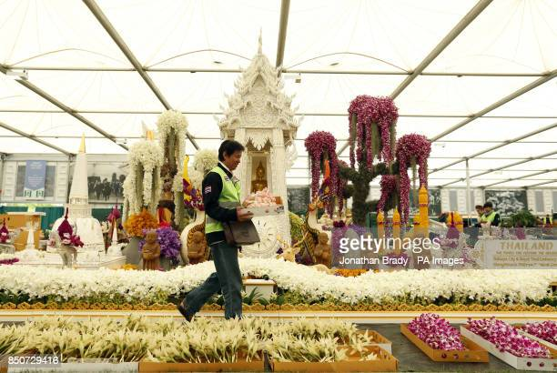 Khun Sun Ton carries Dendrobium Surin Pink past the Nong Nooch Thailand Tropical Garden display at the Chelsea Flower Show London
