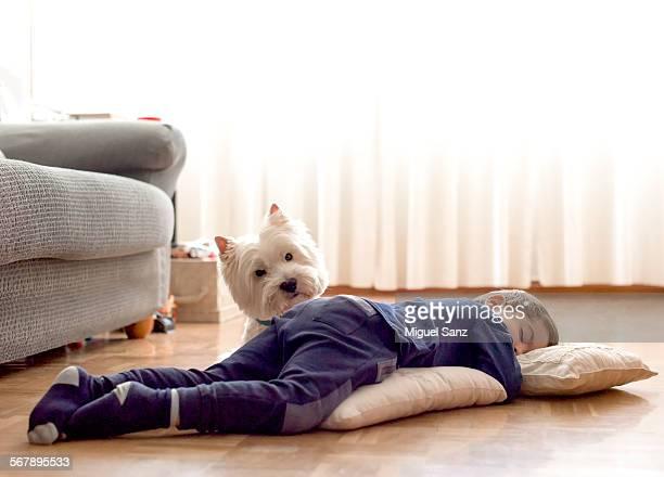 kid, 3 years, sleeping on the floor and his westie