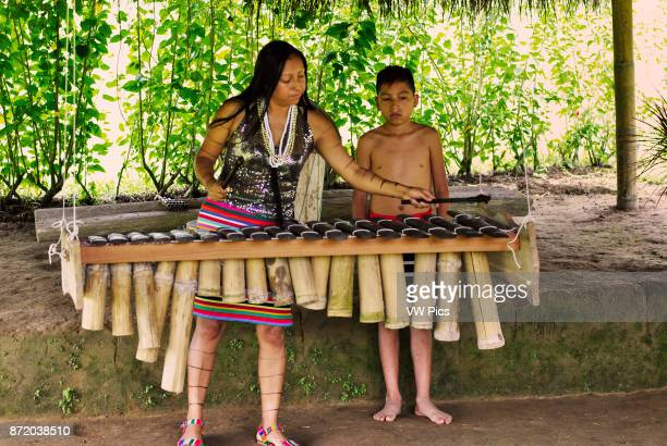 A kid and a woman tsachilas playing the Marimba Tsachila community Santo Domingo de los Tsachilas Pichincha Ecuador
