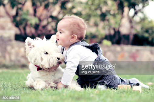 Kid and westy puppy playing on grass