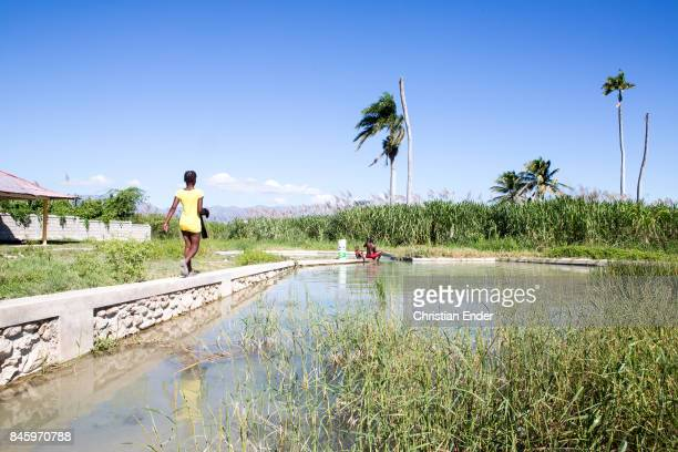 PortauPrince Haiti December 09 2012 A kid is walking towards a woman and a small boy doing their laundry in a basin near PortauPrince Palm trees...