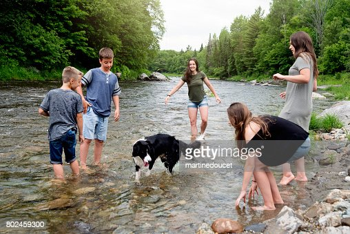 Kids and dog playing in river in summer nature. : Stock Photo