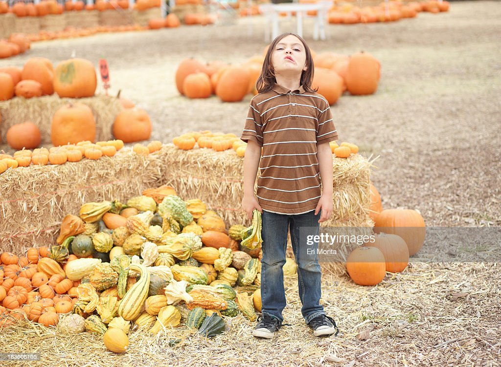 Kids at pumpkin patch : Stock Photo