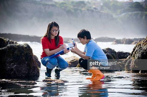 kids gathering research information in tide pools