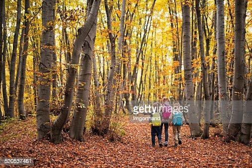 Los niños de excursionismo en otoño beech bosque