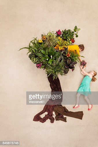 Kids in park climbing in tree