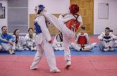 Kids on taekwondo training in gym