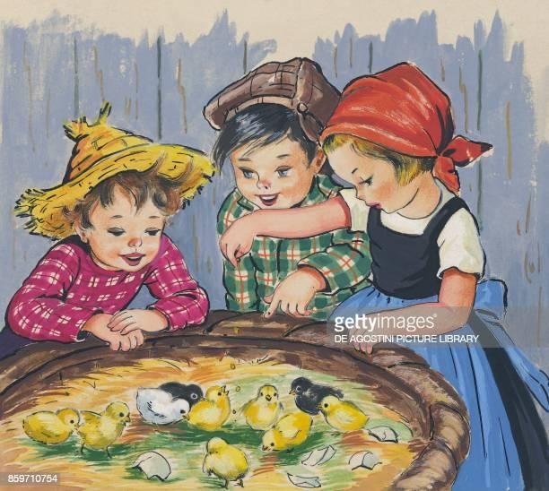 Kids nursing chicks children's illustration drawing