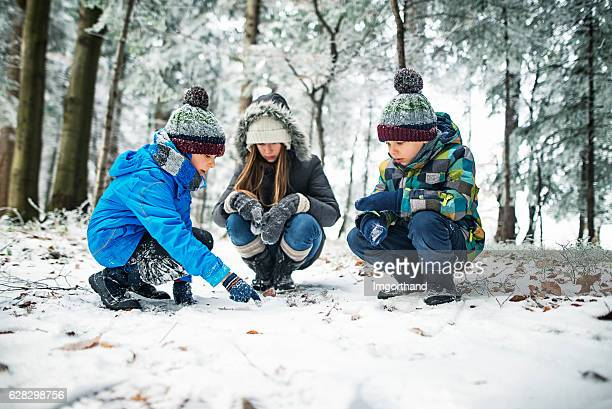 Kids observing animal tracks on snow in winter forest