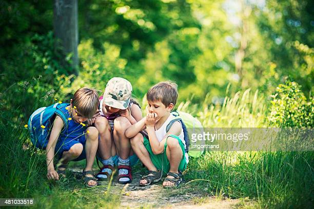 Kids observing bugs in forest