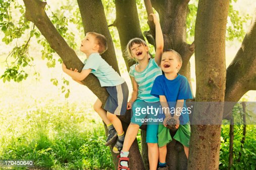 Kids on tree : Foto de stock