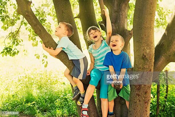 Kids on tree