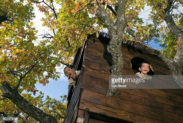 Kids playing in a tree house.