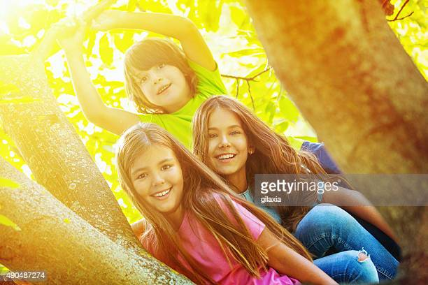 Kids playing in a tree.