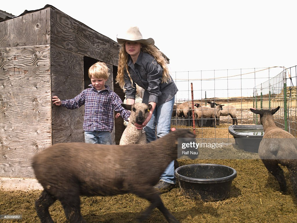 Kids with 4-H lamb : Stock Photo