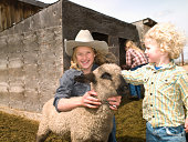 Kids with 4-H lamb on family ranch in Big Timber, Montana