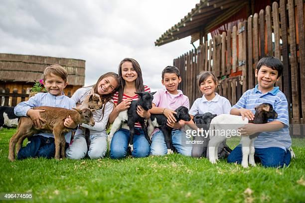 Enfants avec les chèvres