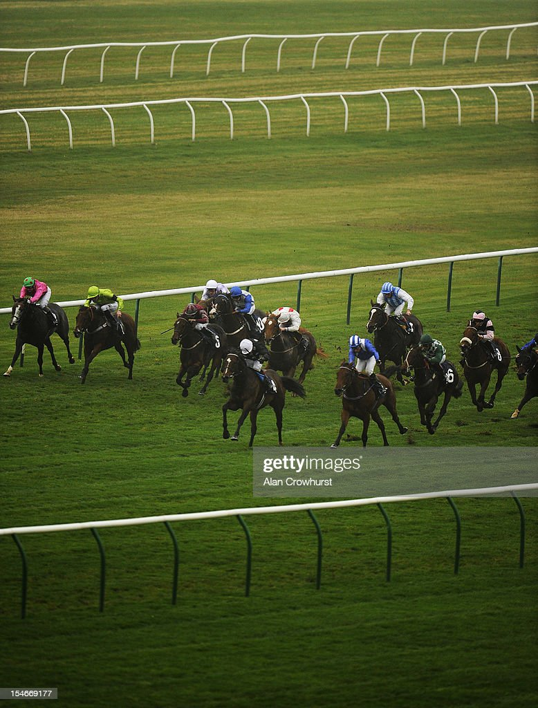 <a gi-track='captionPersonalityLinkClicked' href=/galleries/search?phrase=Kieren+Fallon&family=editorial&specificpeople=198970 ng-click='$event.stopPropagation()'>Kieren Fallon</a> riding Hippy Hippy Shake (C, black, white cap) win The Thoroughbred Breeders' Association Fillies' Handicap Stakes at Newmarket racecourse on October 24, 2012 in Newmarket, England.