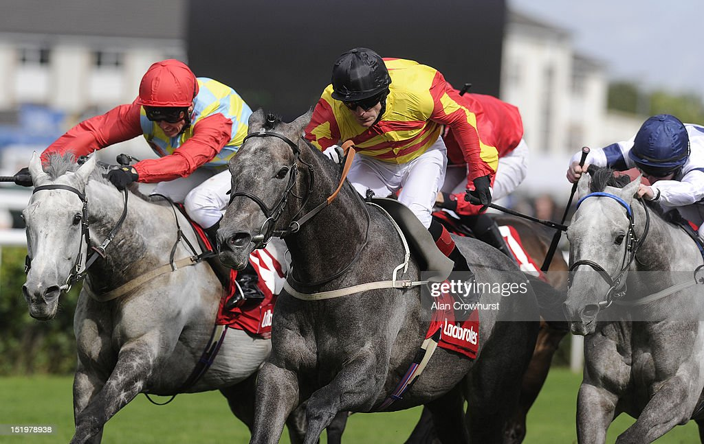 Kieren Fallon riding Sir Graham Wade win The Ladbrokes Mallard Stakes at Doncaster racecourse on September 14 2012 in Doncaster England