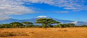 Africa Kenya snow capped Kilimanjaro mountain in Tanzania in the background, under cloudy blue skies.