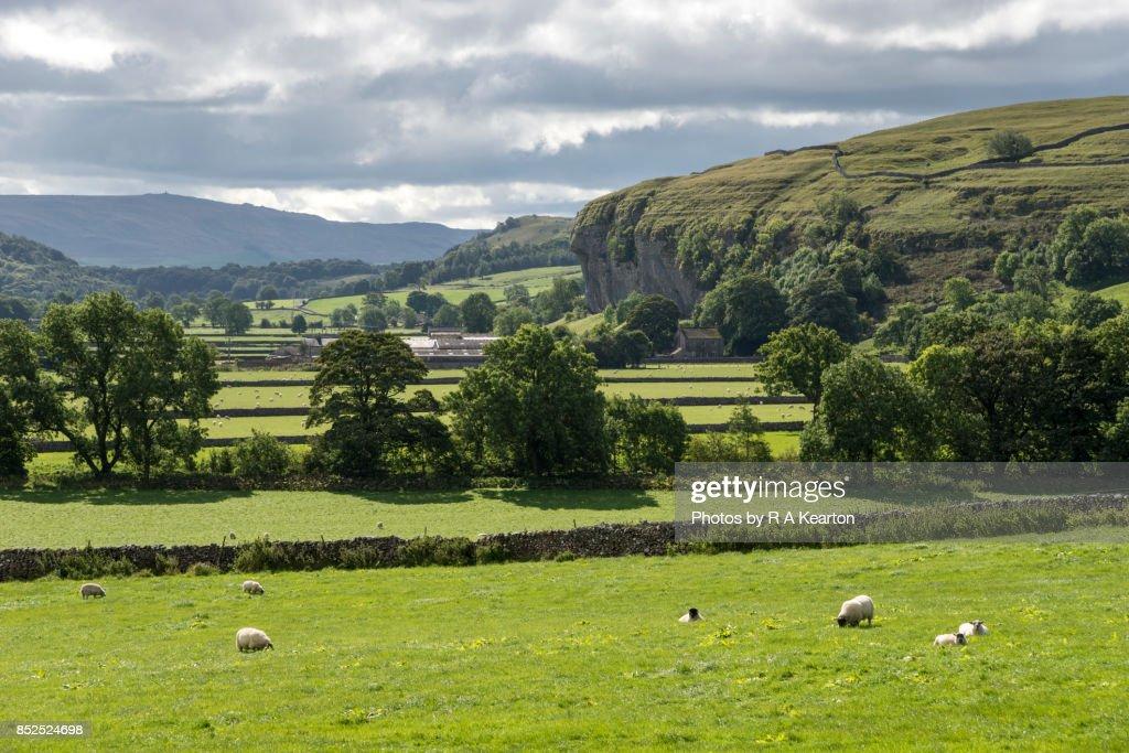 Kilnsey crag near Grassington, Wharfedale, Yorkshire Dales : Stock Photo