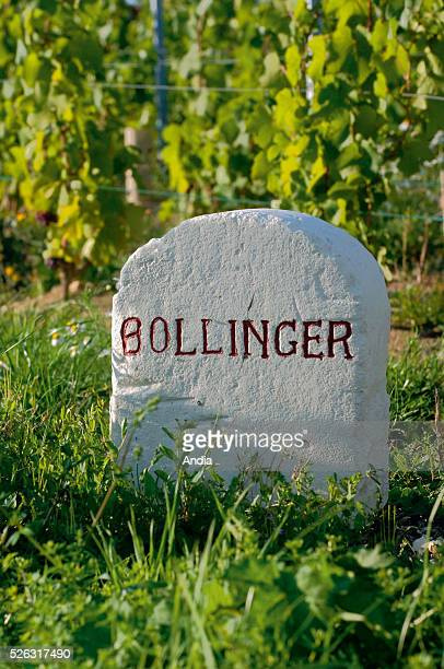 kilometremarker by the roadside indicating the famous 'Bollinger' vineyard in the historic province of Champagne
