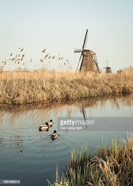 Kindedijk, Netherlands