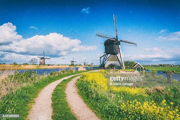 Kinderdijk Windmills in Spring